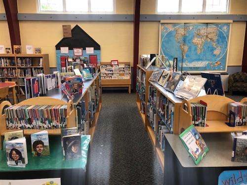 Picture Books and Biographies